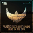 Palastic, Bright Sparks Lying In The Sun