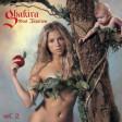 Shakira - Hips Don t Lie (ft. Wyclef Jean)