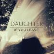 Shallows - Daughter
