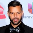 Ricky Martin- Livin la vida loca
