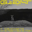 Calvin Harris & Rag'n'Bone Man- Giant